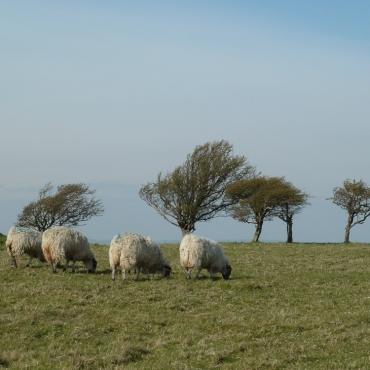 Fabulous countryside