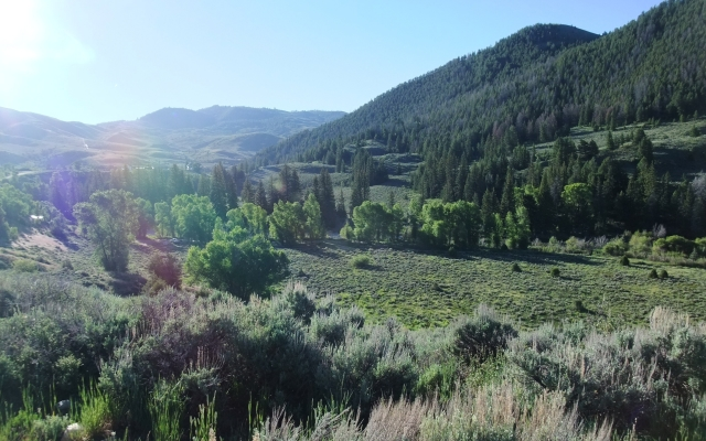 Go Wild in the Country – Frisco to Hot Sulphur Springs