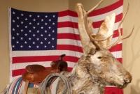 We're Going on a Bear Hunt – Dubois to Jenny Lake, Grand Teton National Park